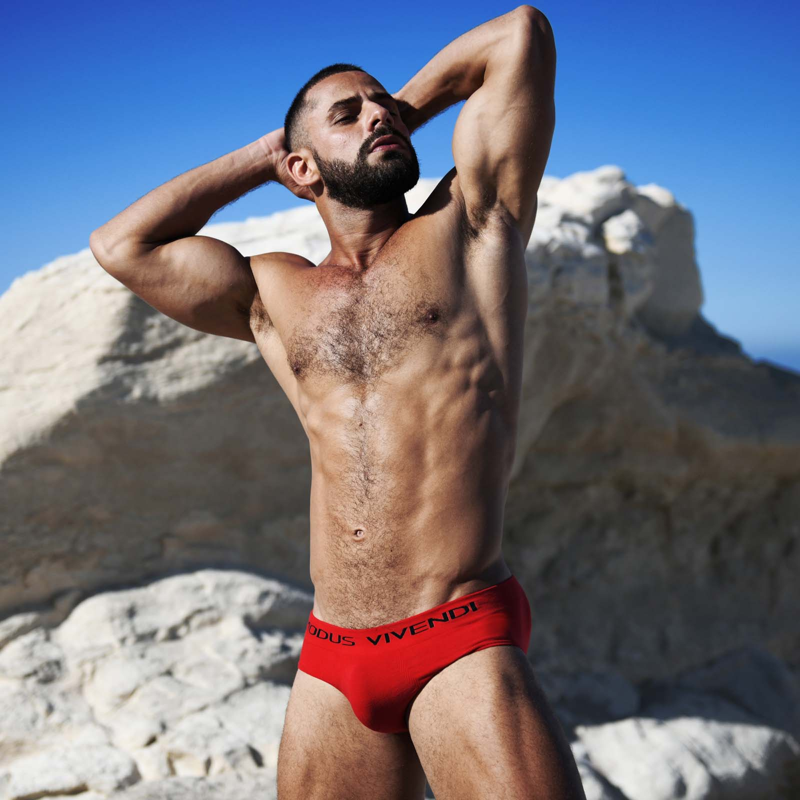 Brief Modus Vivendi Seamless 09912